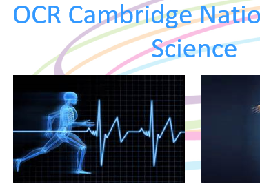 Cambridge National Sports Science Introduction Lesson