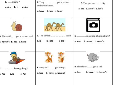 Verb to be+ have/has got revision worksheet for starters (junior b)