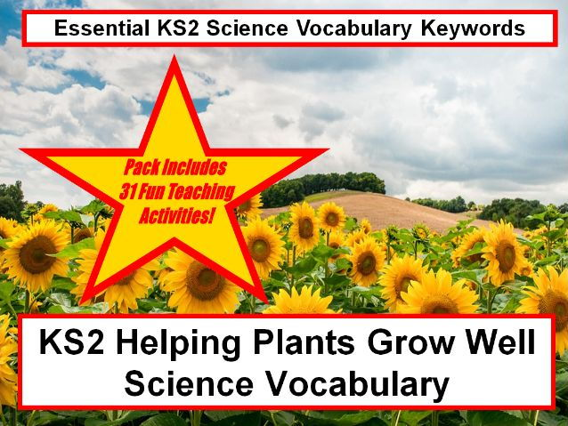 KS2  Helping plants grow well Science Vocabulary+Fun loops cards + 31 Teaching Activity Ideas To Try