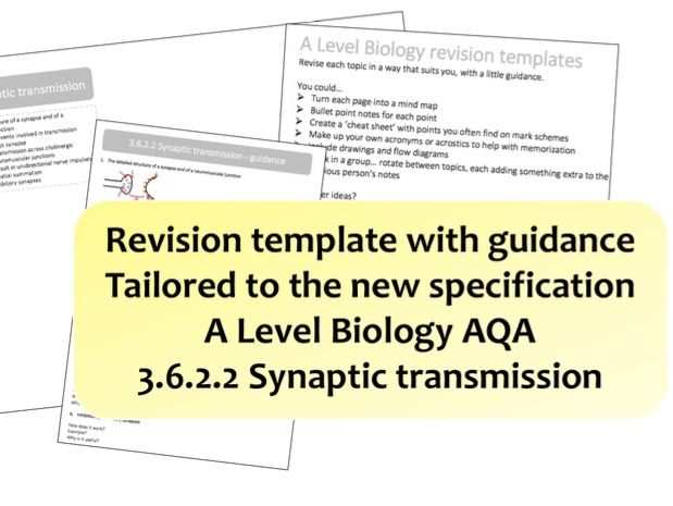 3.6.2.2 Synaptic transmission | NEW A Level Biology revision template with guidance | AQA