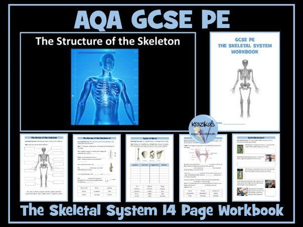 AQA GCSE PE - The Skeletal System Workbook / Worksheets