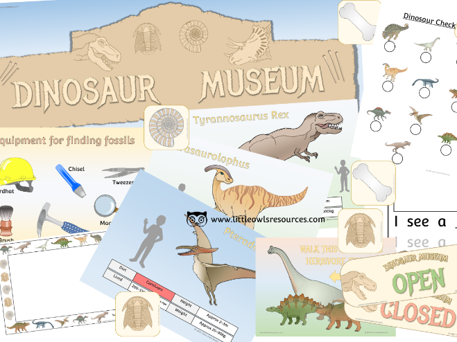 Dinosaur Museum Role Play Area PACK