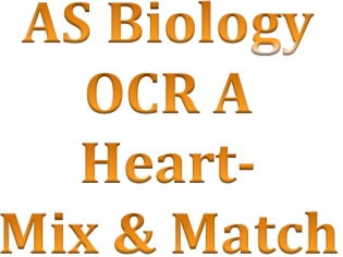 OCR A Heart Mix & Match activity