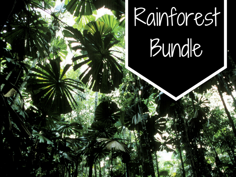 Rainforest Bundle-Art, Music, Drama