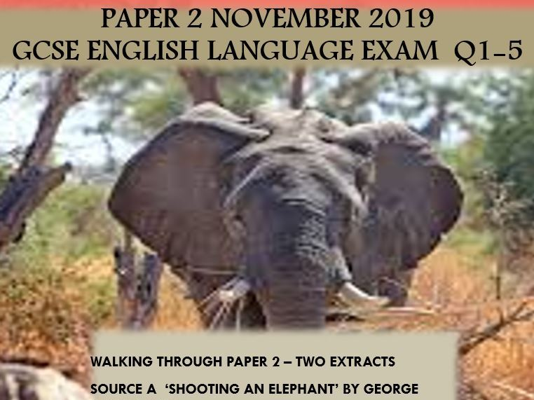 P2 November 2019 GCSE English Language