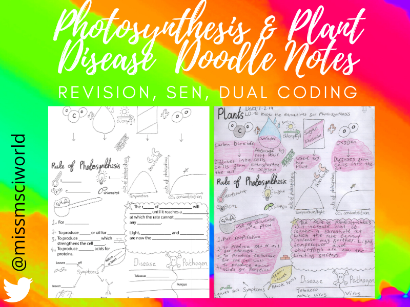 Photosynthesis & Plant Disease Science Doodle Notes