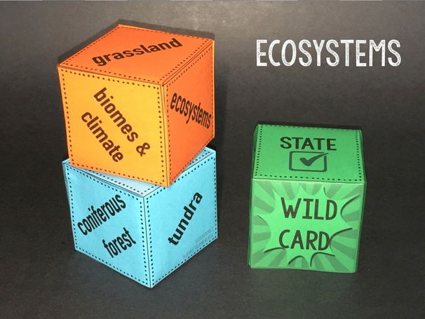 Ecosystems Review Qubes