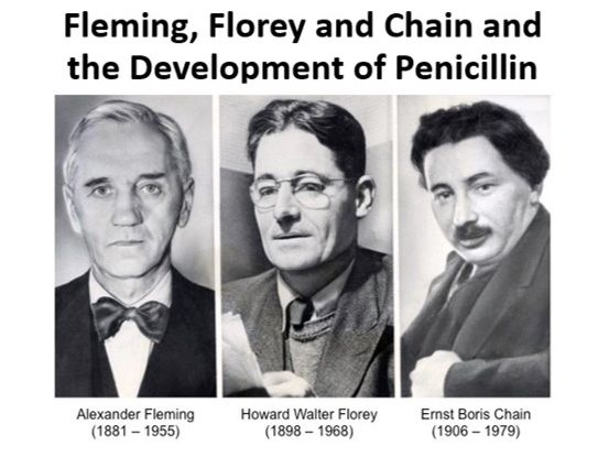 Fleming, Florey and Chain and the Development of Penicillin