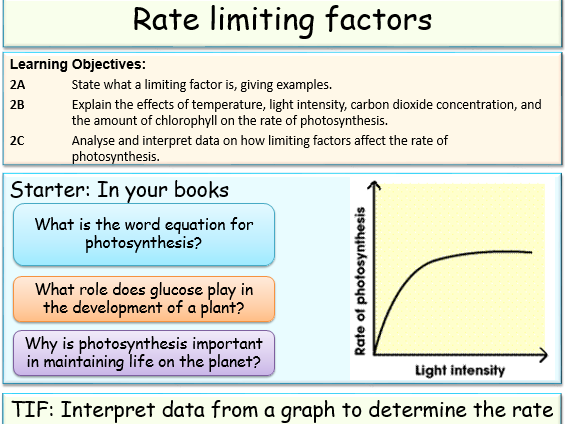 Rate Limiting Factors By Jubblord Teaching Resources Tes