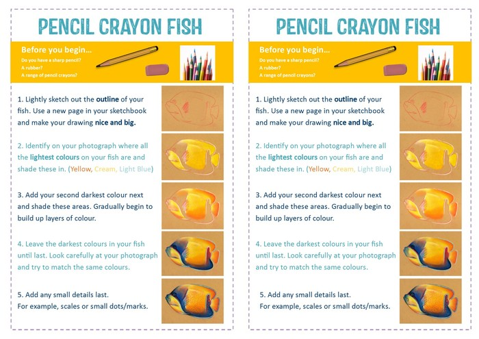 Step by Step Colour Pencil Fish