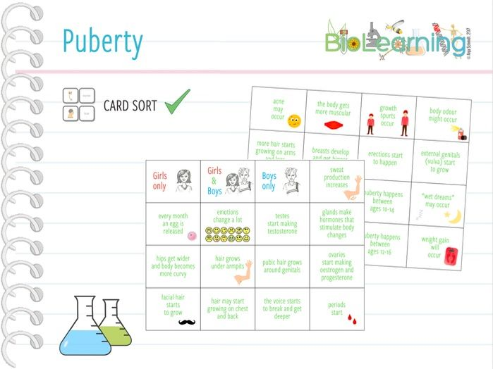 Puberty - Card sort (KS2/KS3)