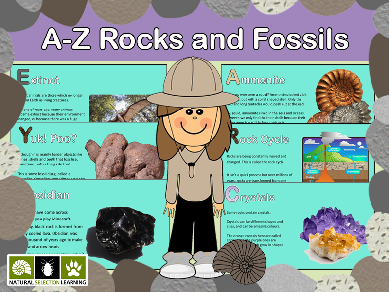 Rocks and Fossils A-Z KS2