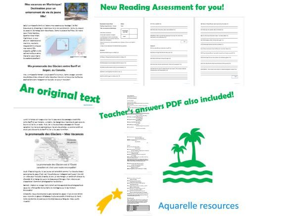 French Reading Comprehension Activity Vacances Holidays Original New Material