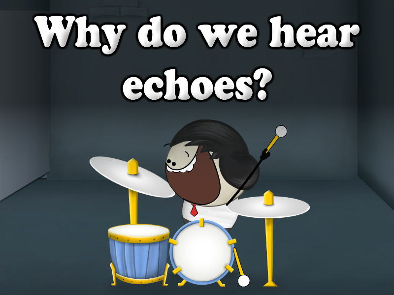 Learning about Echoes