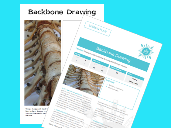 Backbone Drawing Cover / Sub Lesson
