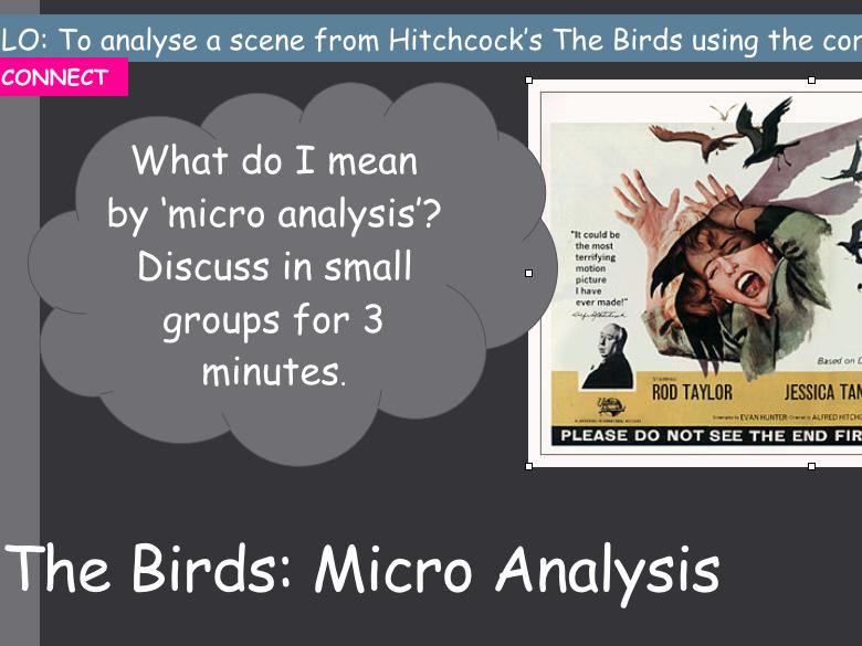 Micro Analysis using The Birds