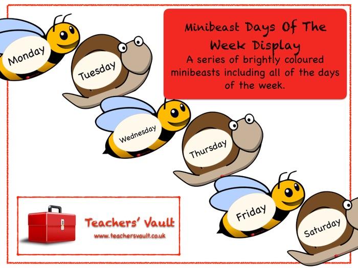 Minibeast Days Of The Week Display