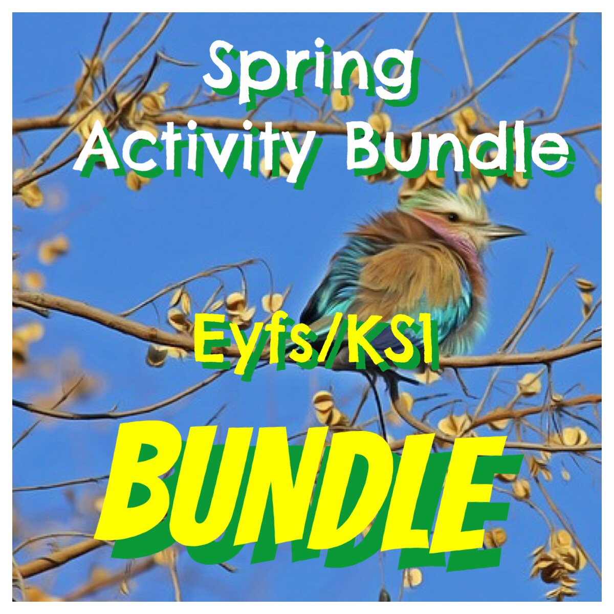 Spring Activity Bundle for EYFS/KS1