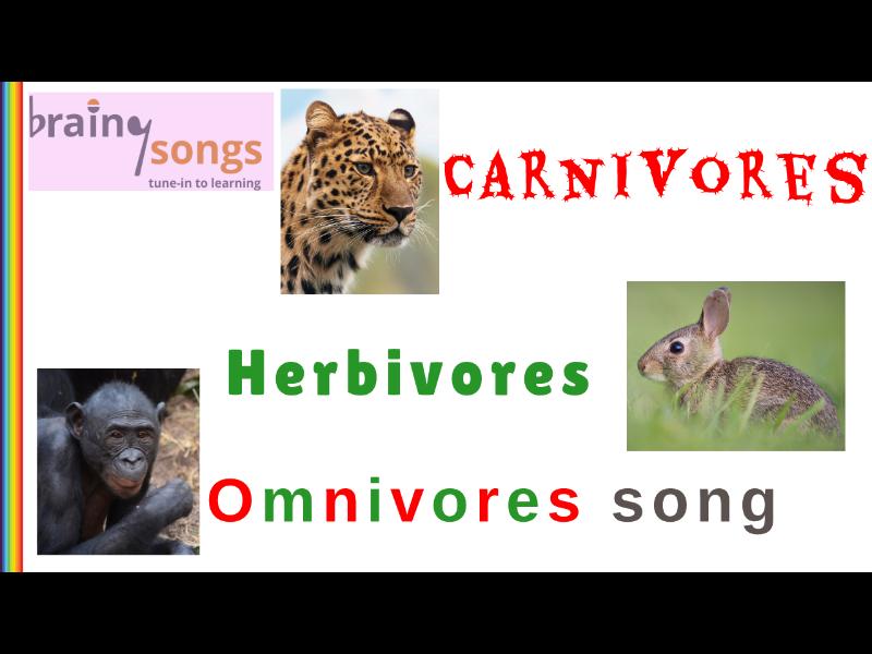 CARNIVORES, HERBIVORES & OMNIVORES for Year 1