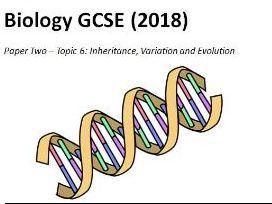 Topic 6 Inheritance booklet GCSE Biology AQA