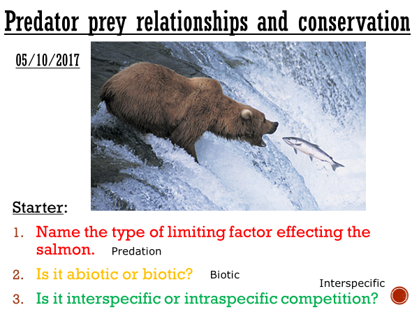 Predator/prey relationships & conservation - complete lesson (AS/A2)