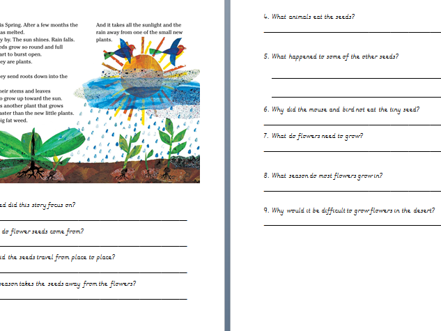 KS1 Tiny Seed Reading comprehension sheet