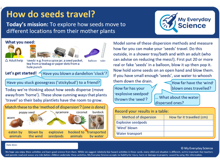 Y3 Plants My Everyday Science Cards
