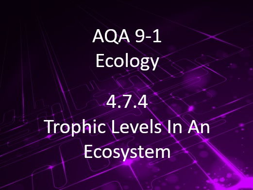 New AQA (9-1) GCSE Biology Ecology:Trophic Levels In An Ecosystem (4.7.4)