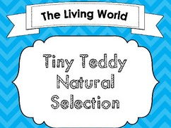 Tiny Teddy Graham Natural Selection