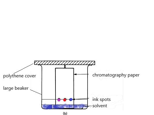 IGCSE chemistry - Paper Chromatography