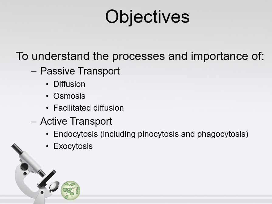 PowerPoint on Transport across the cell membrane