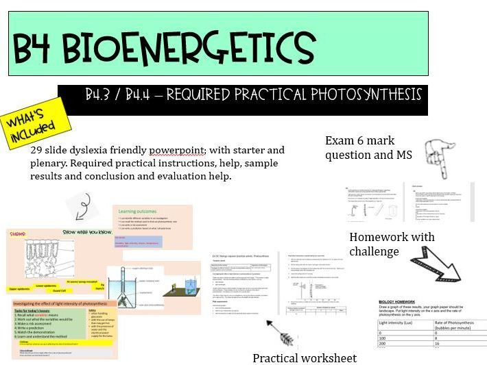 NEW AQA GCSE 9-1 TRILOGY B4.3 & 4 Required practical photosynthesis
