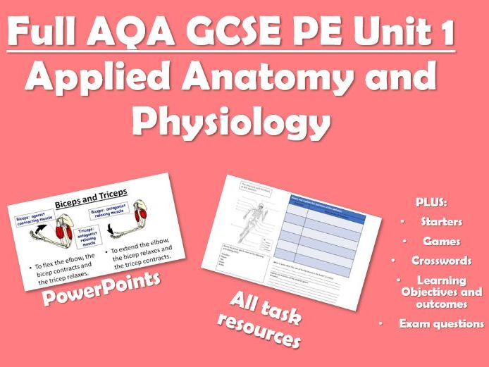 Complete AQA GCSE PE Unit of Work - Unit 1 - Applied Anatomy and Physiology