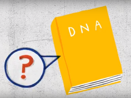 How to Read DNA: KS3 - DNA Discoveries