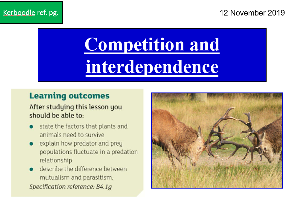 B4 Competition and interdependence