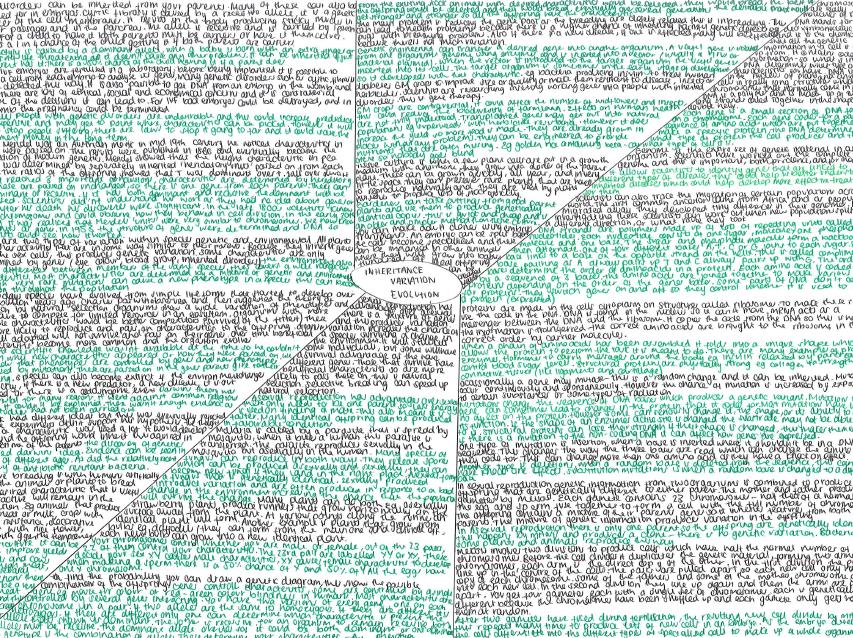 GCSE Biology-  Inheritance, variation and evolution