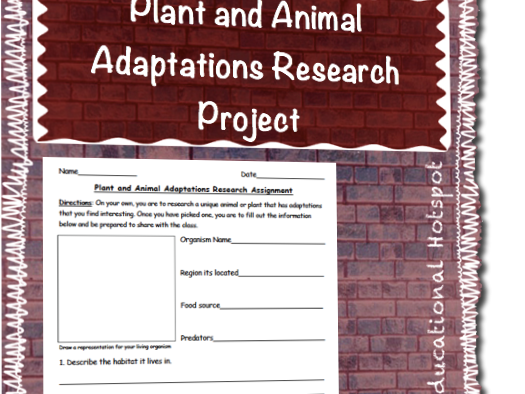 Plant and Animal Adaptations Research Project