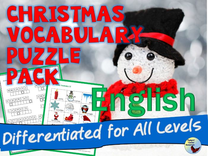 Holiday Puzzle Pack ESL EFL English Language Learners