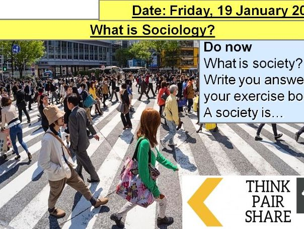 What is sociology AQA?