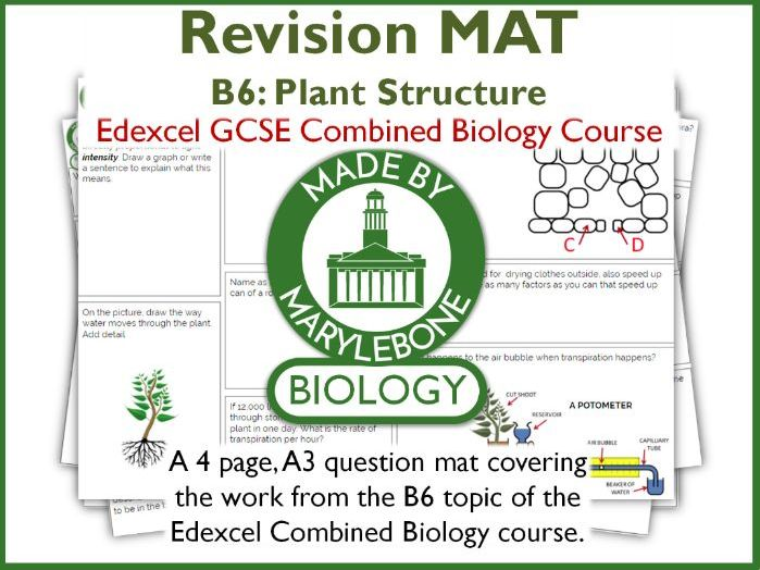 Revision Mat - Plant Structures - Topic B6 Edexcel GCSE Combined Biology
