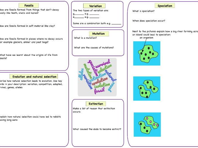 Evolution Natural Selection And Speciation Revision Sheet