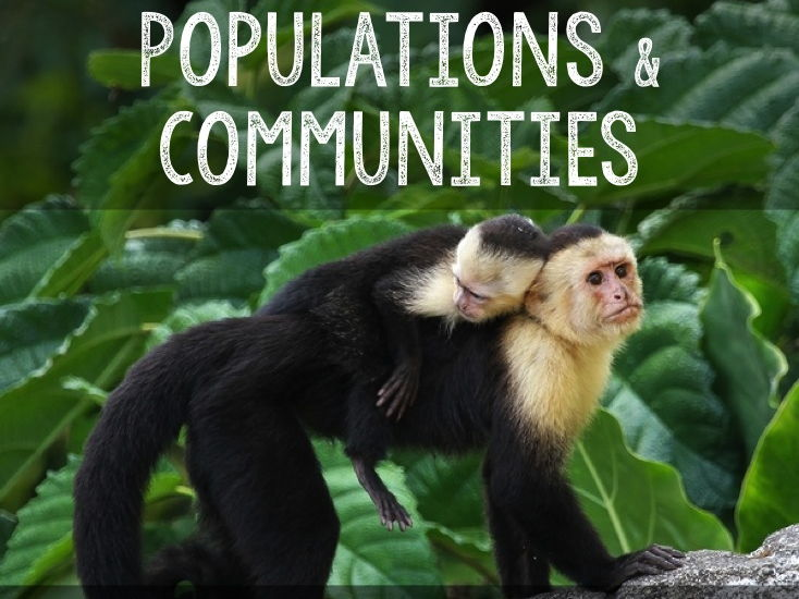 Populations and Communities PowerPoint and Notes