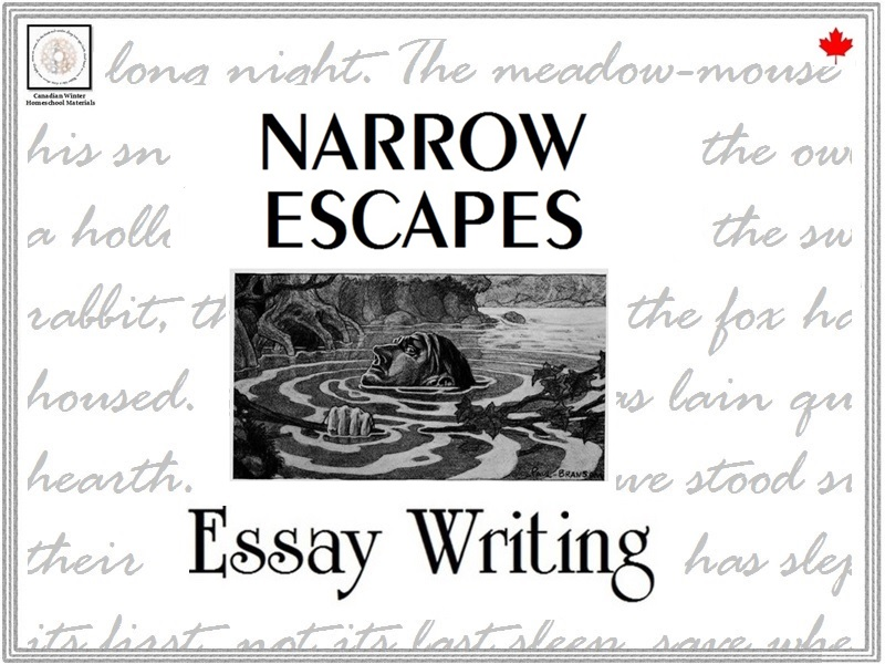 Essay Writing: Narrow Escapes