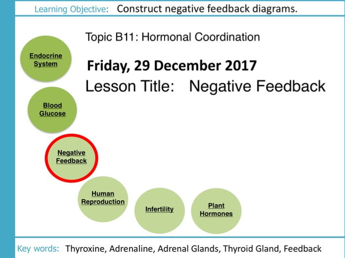 Aqa gcse b11 hormonal coordination l4 negative feedback by cover image ccuart Images