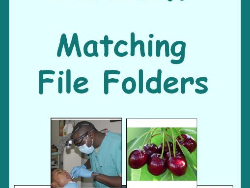 Autism Matching File Folder