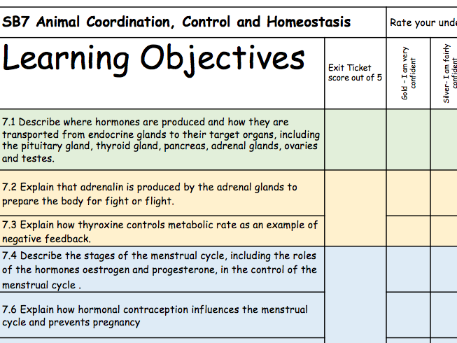 SB7 Guided Revision Booklet