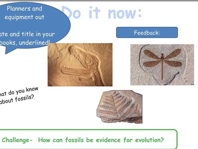 AQA Trilogy Biology Unit 7 Lesson 5 Changing Organisms