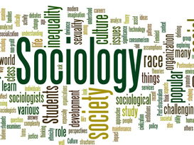 Sociology Inequality, family, functionalists, subculture, marxism, mnemonics, media, class, crime, research methods,  crime and deviance