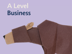 Edexcel A Level Business Theme 2 Mock (A Level Style)