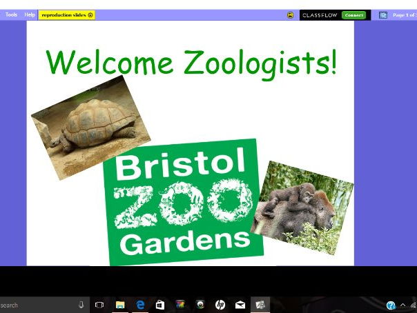 Animal Reproduction- based around being an animal specialist at Bristol Zoo